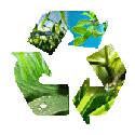 programmes de formation en environnement